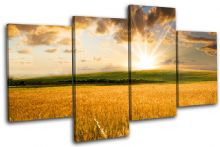 Field Sunrise Landscapes - 13-2213(00B)-MP04-LO